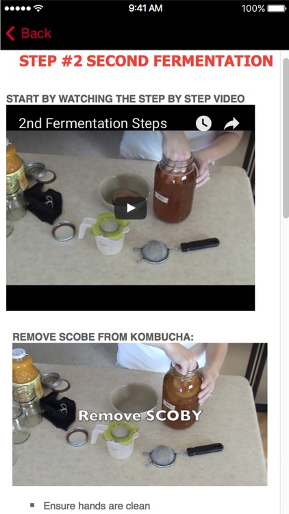 KOMBUCHA Made Easy! How to Make Kombucha Tea (Ad Free) - Your First Home Brew With Probiotics