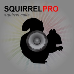 Squirrel Calls - Bluetooth Compatible Ad Free