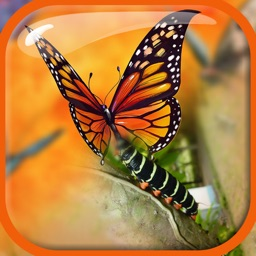 Blender Camera Effect –  Edit & Blend Photo.s with Overlap Effects in Superimpose Studio