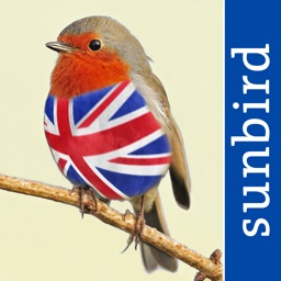 All Birds UK - A Complete Field Guide to the Official List of Bird Species Recorded in Great Britain and Northern Ireland