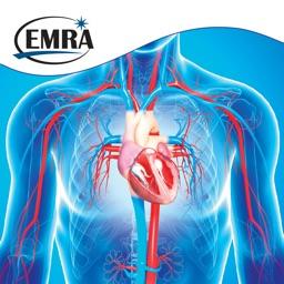 EMRA PressorDex