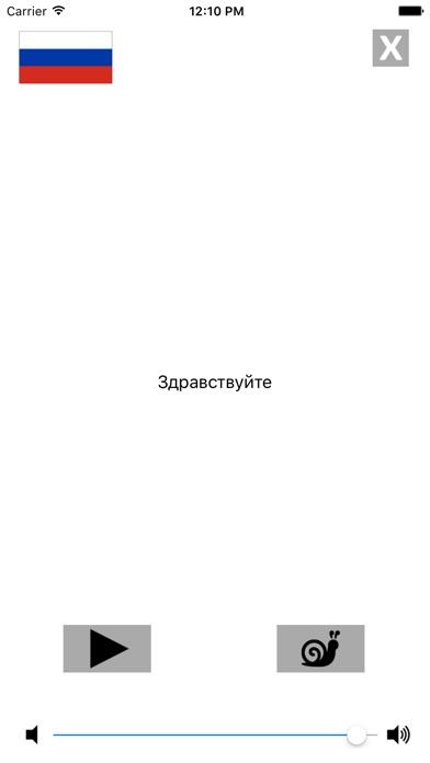 Русско / Венгерский говорящий разговорник словарь - Multiphrasebook Скриншоты6