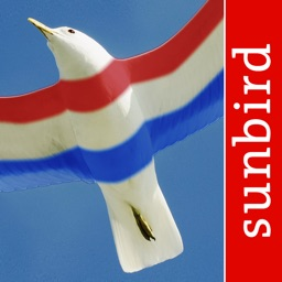 Birds of the Netherlands - a field guide to identify the bird species native to NL and Holland