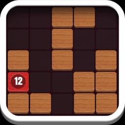 Wooden block puzzle 2016