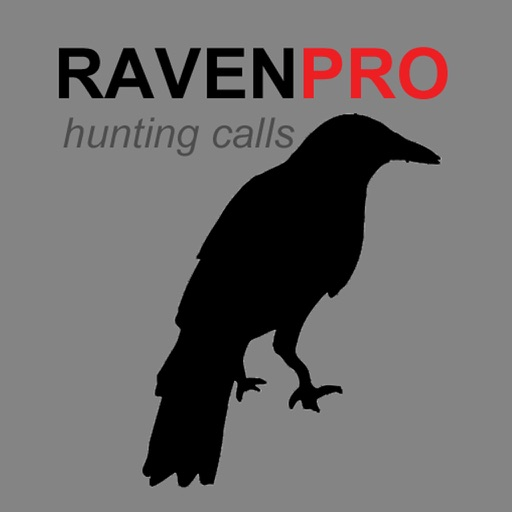REAL Raven Hunting Calls -- 7 REAL Raven CALLS & Raven Sounds! - Raven e-Caller - Ad Free - BLUETOOTH COMPATIBLE