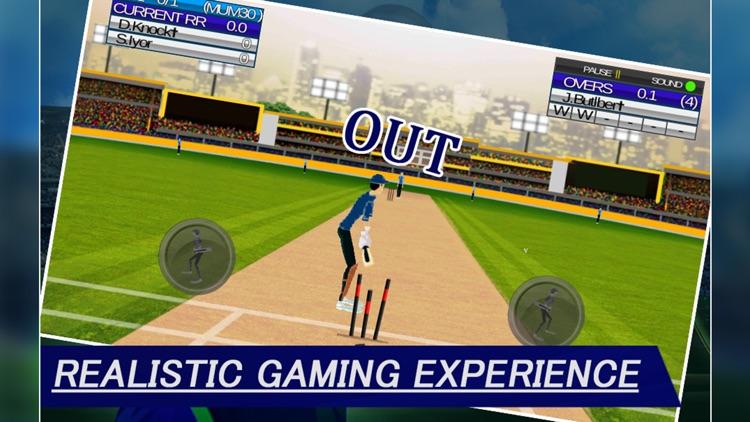 IPL Cricket Craze 3D