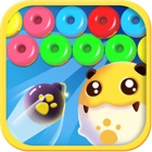 Pet Bubble Shooter icon