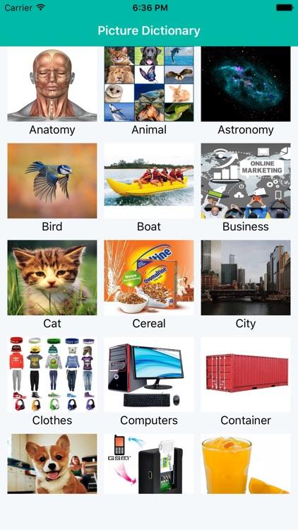 Picture Dictionary - Multi Language