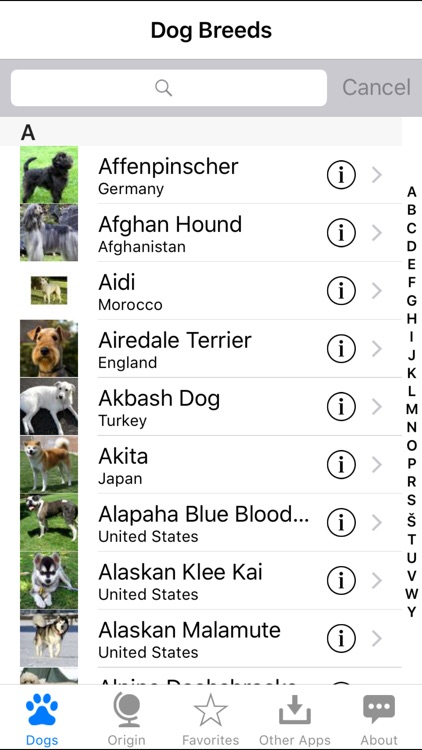 Guide to Dog Breeds