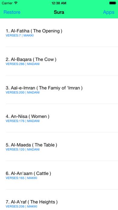 Al Quran - Turkish screenshot one
