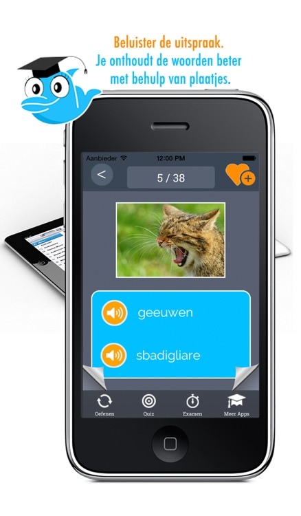 Learn Italian and Dutch Vocabulary: Memorize Words - Free screenshot-0