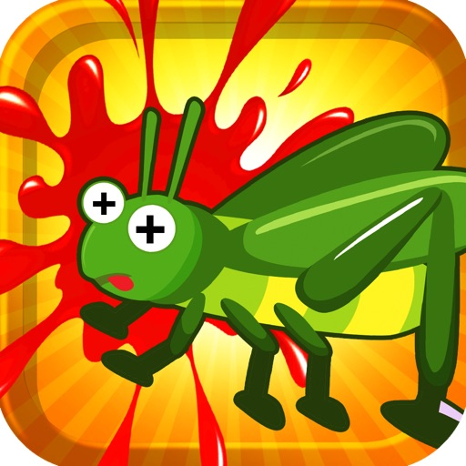 A Cricket Chase And Smash Puzzle Brain Teaser Game Free