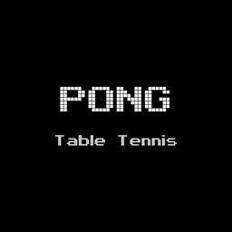 Pong Table Tennis