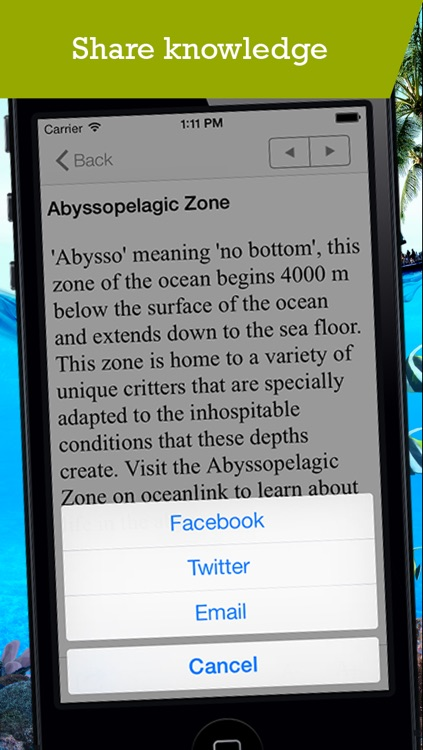 Marine Biology Glossary screenshot-3
