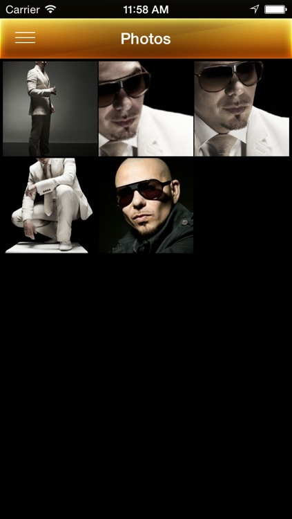Pitbull screenshot-4