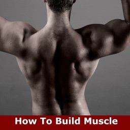 How To Build Muscle: Learn How to Build Muscle and Strength