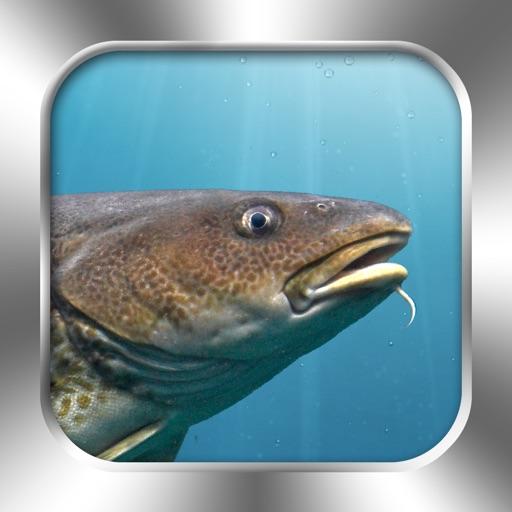 Fische PRO - NATURE MOBILE