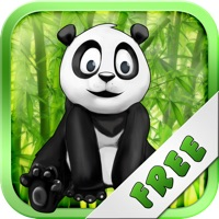 Codes for Panda Run In The Jungle Free - Can You Hop To The Finish? Hack