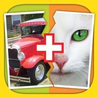 Codes for 2 Pics 1 Word: Mix Pics Puzzle Hack