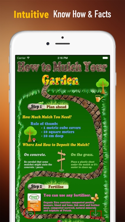 Home Gardening and Yard Landscaping 101: DIY Tips with Video Guide