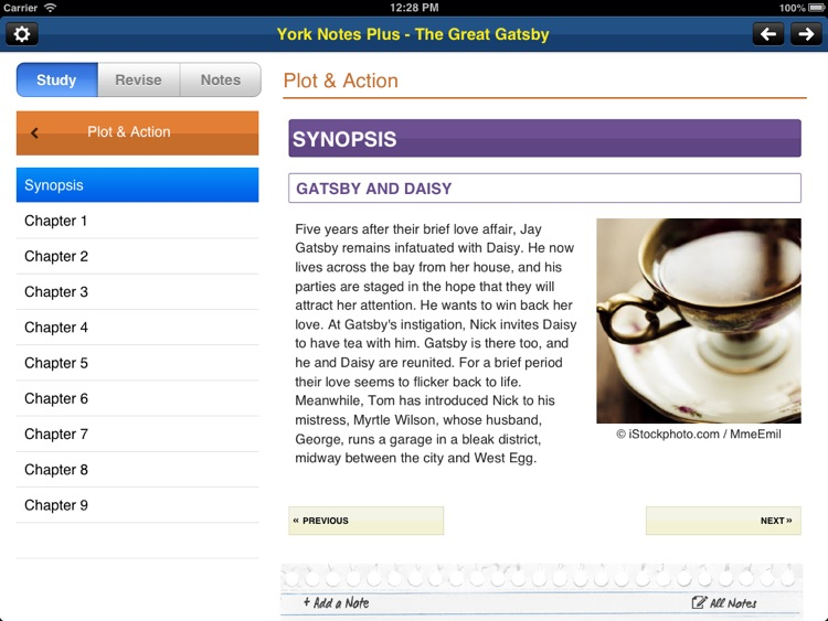 The Great Gatsby York Notes AS and A2 for iPad