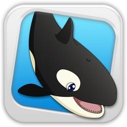 Killer Whale - Enter Orca's Trail Paradise