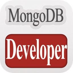 MongoDB Developer