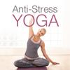 Brigitte Fitness Anti-Stress YOGA HD