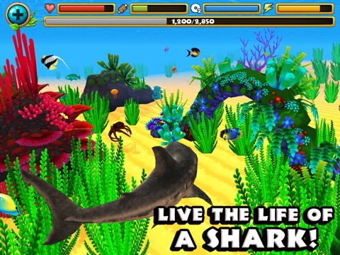 Wildlife Simulator: Shark на iPad