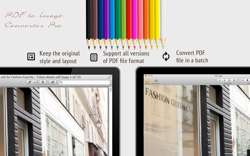PDF to Image Converter Pro скриншот программы 2