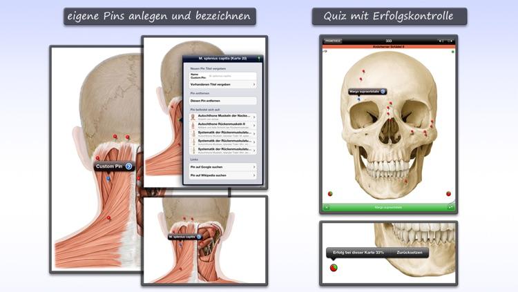 Thieme Anatomy on the Go 2.0 - English screenshot-3