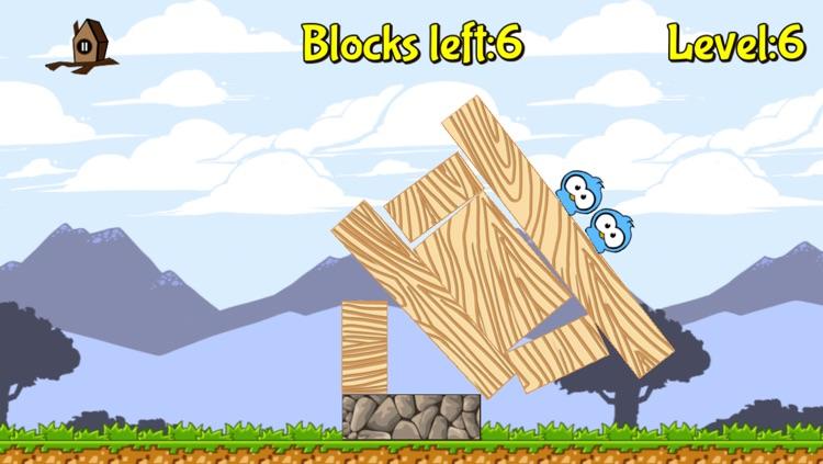 Birds'n'Blocks