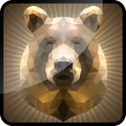 3D Grizzly Bear Flick 2014 / By Deer & Duck Trophy Hunt-ing Pro
