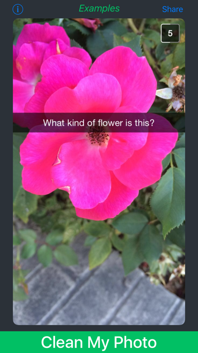 Screenshot for Caption Remover for Snapchat* in United States App Store
