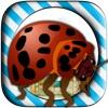 Bug Candies Quest Village