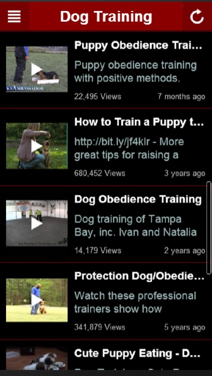 How To Train Dog: Learn How To Train a Dog The Right Way Yourself At Home screenshot-2