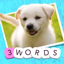 3 Words: Cute Animals – a word game based on cuddly animal pictures