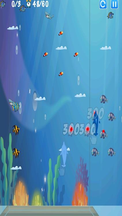 Dolphin Race - Fun Underwater Platform Climb Free by glenn
