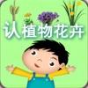 儿童认植物花卉 - 幼儿 宝宝 认知 学习系列 13