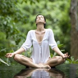 Yoga Exercises - Learn Yoga Through Yoga Videos Tutorials
