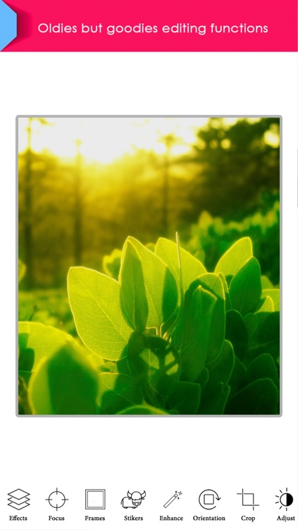 Phototаstic – Full Featured Photo Editor screenshot-3