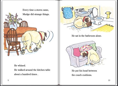 Henry And Mudge And The Wild Wind By Cynthia Rylant On Apple Books