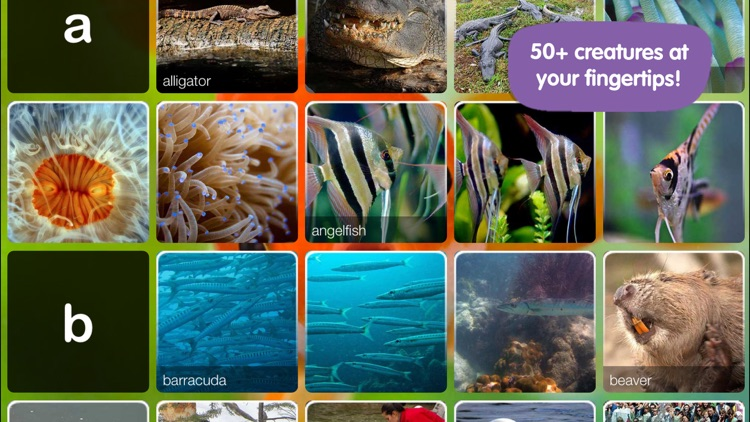 ABC Aquarium screenshot-1