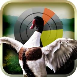 Duck Hunting Deluxe