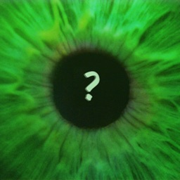 Guess the Eyes Quiz