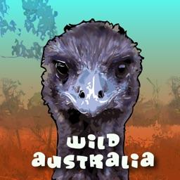Taronga Zoo - Wild Australia