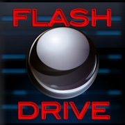 Flash Drive Business