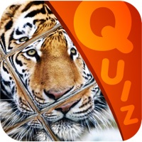 Codes for My Top Animal Magic Tile Playtime Quiz - Free App Hack