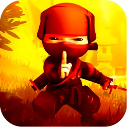 Tiny Ninja War Fighter Match