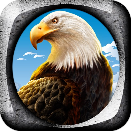 Eagle Flight Control Free Game